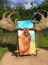 Hertfordshire Zoo